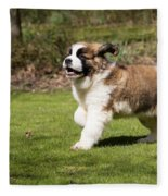 St Bernard Dog Fleece Blanket