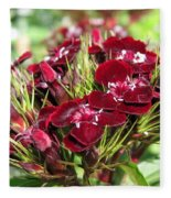 Sweet William Named Sooty Fleece Blanket