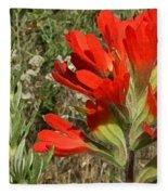 Texas Paintbrush Fleece Blanket