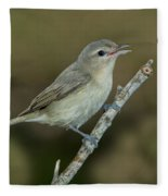 Warbling Vireo Fleece Blanket