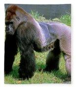 Western Lowland Gorilla Silverback Fleece Blanket