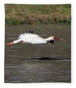 White Ibis In Flight Fleece Blanket