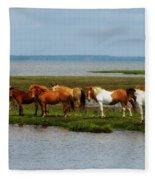 Wild Horses Of Assateague Island Fleece Blanket
