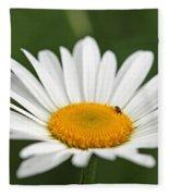 Wildflower Named Oxeye Daisy Fleece Blanket