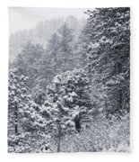 Winter In Pike National Forest Fleece Blanket