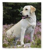 Yellow Labrador Retriever Fleece Blanket