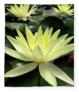 3 Yellow Lotus Fleece Blanket