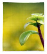 Yellow Sedum Fleece Blanket