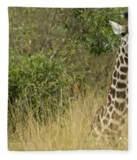 Young Giraffe In Kenya Fleece Blanket