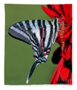 Zebra Swallowtail Butterfly Fleece Blanket