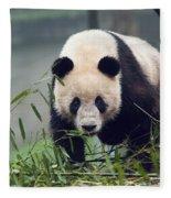 Giant Panda Fleece Blanket