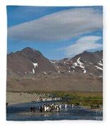 King Penguins Fleece Blanket