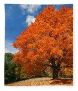 A Blanket Of Fall Colors Fleece Blanket