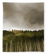 Aspen Trees In Vail Fleece Blanket