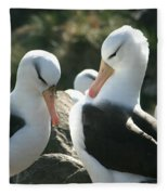 Black Browed Albatross Pair Fleece Blanket