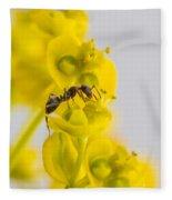 Black Garden Ant On Yellow Flower Fleece Blanket