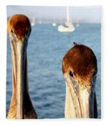 California Pelicans Fleece Blanket