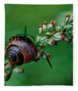 Copse Snail Fleece Blanket