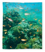 Coral Reef Fleece Blanket