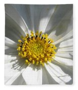 Cosmos Named Sensation Alba Fleece Blanket