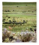 Environmental Tierra Del Fuego -- Fleece Blanket