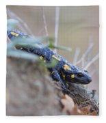 Fire Salamander - Salamandra Salamandra Fleece Blanket