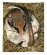 Garden Dormouse Fleece Blanket