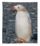 Gentoo Penguin Fleece Blanket