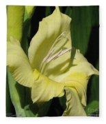 Gladiolus Named Nova Lux Fleece Blanket