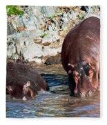 Hippopotamus In River. Serengeti. Tanzania Fleece Blanket