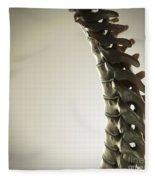 Human Spinal Bones Fleece Blanket