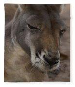 Kangaroos Fleece Blanket