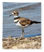 Killdeer Fleece Blanket