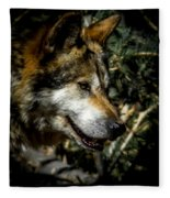 Mexican Grey Wolf Fleece Blanket