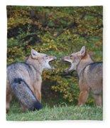 Patagonian Red Fox Fleece Blanket
