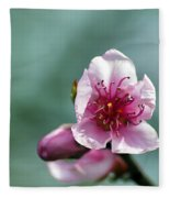 Pink Blossom Fleece Blanket