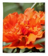 Portulaca Named Sundial Tangerine Fleece Blanket