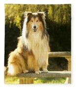 Rough Collie Dog Fleece Blanket