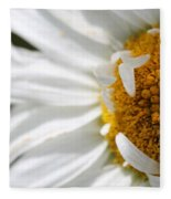 Shasta Daisy Named Paladin Fleece Blanket
