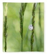 Snail On Grass Fleece Blanket
