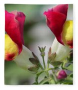 Snapdragon Named Floral Showers Red And Yellow Bicolour Fleece Blanket