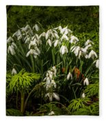 Snowdrop Woods Fleece Blanket