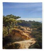 Torrey Pines State Park - California Fleece Blanket