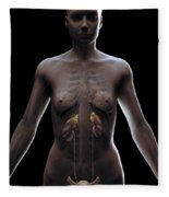 Urinary System Female Fleece Blanket