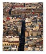 View From Torre Latinoamerican Fleece Blanket