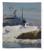 Walrus Resting On Ice Floe Fleece Blanket