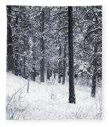Winter In Pike National Forest Fleece Blanket