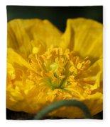 Yellow Iceland Poppy Fleece Blanket