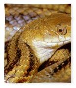Yellow Rat Snake Fleece Blanket