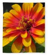 Zinnia Named Swizzle Scarlet And Yellow Fleece Blanket